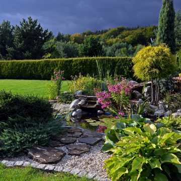 Ogród z oczkiem wodnym. Pomysły i aranżacje