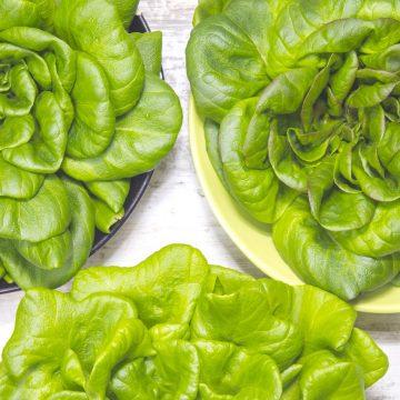Zielona sałata do obiadu. Jak ją podać?