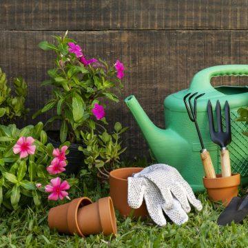 Wiosenne porządki w ogrodzie. O czym należy pamiętać?