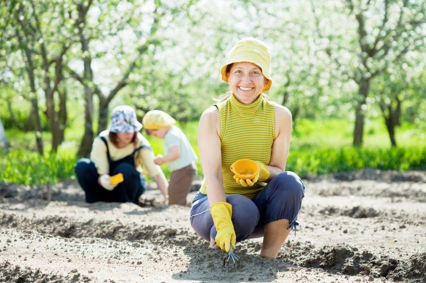 kobieta wysiewająca ogród