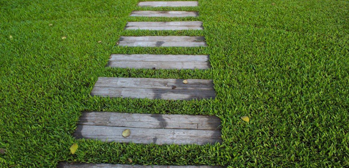 trawnik i ścieżka ogrodowa