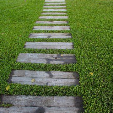 Jak dbać o trawnik przy domu?