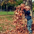10 rzeczy, które należy wykonać w ogrodzie jesienią